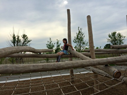 Climbing structures on Governors Island