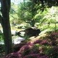 Highlights of the Brooklyn Botanic Garden for Kids