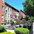 Cobble Hill & Carroll Gardens Kids Neighborhood Guide
