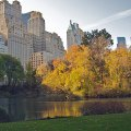 5 Great Places to See Fall Leaves in NYC