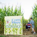 Best Corn Mazes for Kids Near Boston