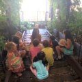 Potions & Planting Party at Gallow Green: A Magical Experience for Kids & Their Grown-ups