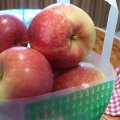 Apple Recipes for Kids and Families - Making the Most of Apple Picking Adventures