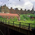 Chelsea with Kids: 50 Things to Do for NYC Families
