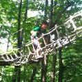Day Trip to Catamount Aerial Adventure Park and Rockwell Museum in Great Barrington, MA
