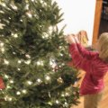 Having a Greener Christmas: Recycle your tree