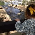 5 Toddler-Friendly Hikes and Nature Walks In & Near Los Angeles