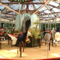 Family Daycation at the Staten Island Zoo: A Brand-new Carousel, a Petting Zoo & Great Educational Programs for Kids