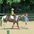 Horseback Riding Lessons and Camps in Hartford County