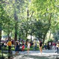 Flatiron and Union Square Kids Neighborhood Guide