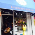 Drop-off Child Care at Brand-new Brooklyn Play Space & Toy Store: Blueberry Kids, Inc.