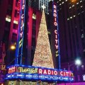 21 NYC Holiday Activities Every Kid Should Try Once