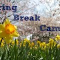 Spring Break Camps for NYC Kids: Cool Programs for Public School Spring Recess