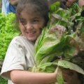 Farm Summer Camps for Fairfield County Kids