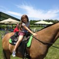 The Top Kid-Friendly Wineries on the North Fork