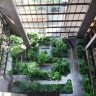 Winter Gardens: Get Out of the Cold at NYC's Indoor Plazas