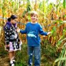 NYC's Only Corn Maze and More Fall Fun at the Queens County Farm Museum