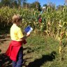 19 Corn Mazes for Kids Near NYC