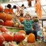 Weekday Picks for LI Kids: CosPlay, Pumpkin Painting, Ghouls & Ghosts, October 12-16