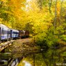 Columbus Day Weekend Fun for Philly Kids: Science, Animals, Trains October 10-12