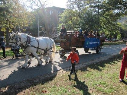 Fort Greene Park Halloween Festival