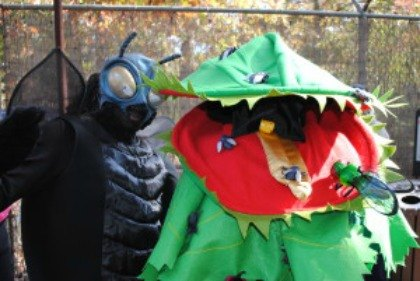 Halloween Fun at a New Jersey Zoo
