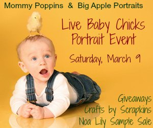 Live Baby Chicks Portrait Event