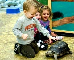 Best NYC Kids Birthday Parties: Blow Your Child's Mind With One of These Amazing Birthday Party Ideas
