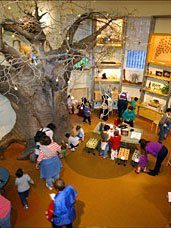 5 Best Indoor Activities for NYC Kids