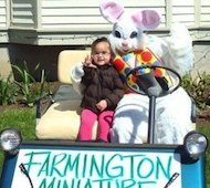 Easter Egg Hunts in Central CT
