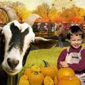 Pumpkin Picking, Corn Mazes and Hayrides in New Jersey