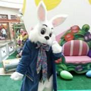 Photos with the Easter Bunny in NJ