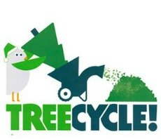 Recycle Your Christmas Tree: MulchFest NYC 2015