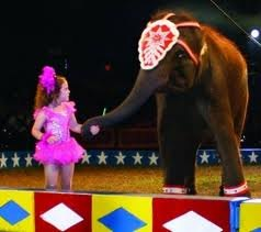 The Cole Brothers Circus: The Circus Is Coming to Town!