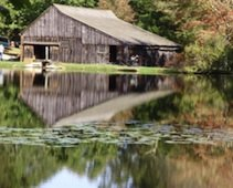 Things To Do With Kids in New London County, CT