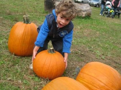 Pumpkin Carving Events in New Jersey