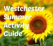 Summer Fun Guide in Westchester