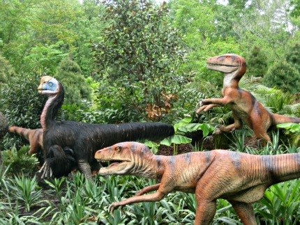 And lots of other dinosaurs
