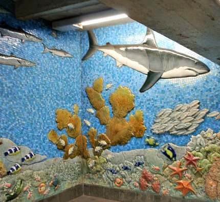 The underwater mural is a favorite at the AMNH station