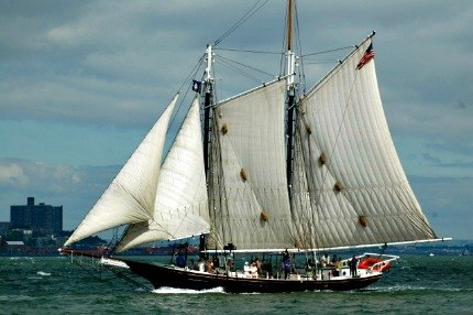 The South Street Seaport Museum's schooner Pioneer is offering free rides