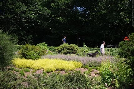 The Heather Garden in Fort Tryon Park is a year-round treasure