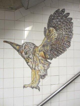 More natural wonders at the AMNH station
