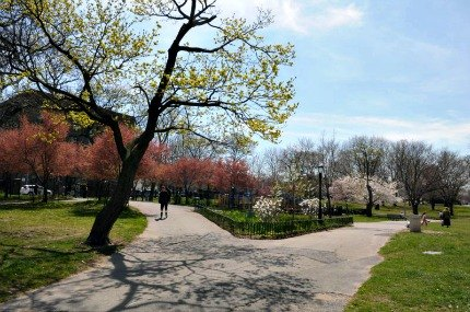 The 24-acre Owl's Head Park is a neighborhood oasis that frequently hosts family events