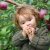 Best Apple Picking Farms in New Jersey with Kids