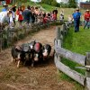 Weekend Fun for NJ Kids: Pumpkins, Harvest Hayride, Oktoberfest