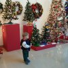 Annual Festival of Trees at the Wadsworth Atheneum: Parent Review
