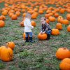 Pumpkin Patches Near NYC Where Kids Can Pick Their Own