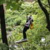 Zip Line and Aerial Treetop Fun Coming to Bronx Zoo