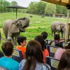 The Best NJ Zoos and Aquariums for Animal Encounters with Kids