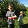 Apple Picking Orchards in Hartford County, CT
